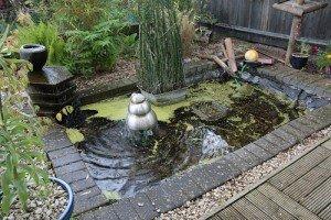 Koi by koi archives du blog bassin de jardin s curit - Bassin exterieur zen metz ...