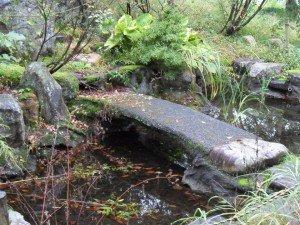 Koi by koi archives du blog bassin de jardin les for Carpe koi lorraine