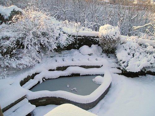 koitech technique sur la construction des bassins de jardins