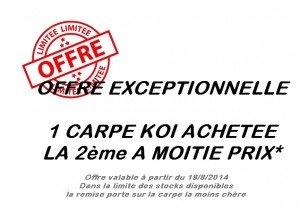 Carpe koi en promotion en Lorraine